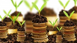 How to make your money pot grow